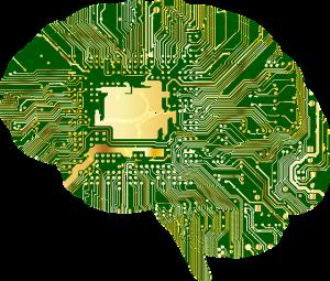 human-brain-circuits
